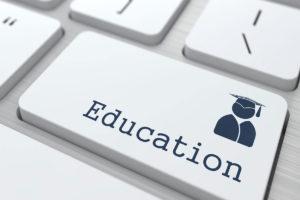 Top 5 Undergraduate Courses in New Zealand